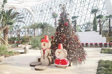 첫 겨울 맞은 서울식물원, 직원이 추천하는 포토스팟 6