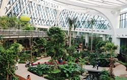 서울식물원 온실 안에 식물들이 싱그럽다