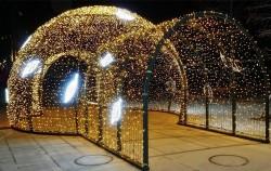 로맨틱한 조명으로 장식된 야외 빛 정원