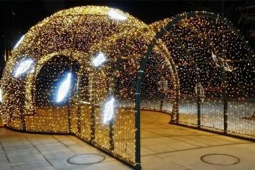 겨울에도 볼거리 가득! 서울식물원서 맞는 크리스마스