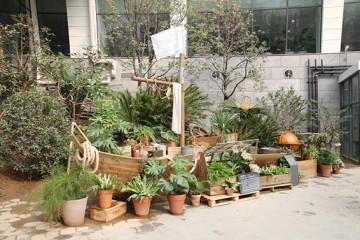 식물탐험대 되어 12개 도시 식물 만나볼까