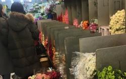 창동꽃시장에서 꽃을 고르는 손님들