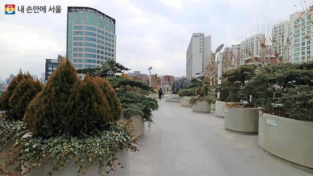 서울로의 또 다른 주인인 50과 228종 2만 4,000주의 식물들