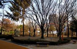 아담한 규모의 도산공원은 인근 시민들에게 편안한 휴식 공간을 제공하고 있다