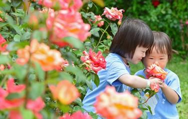 공원으로 꽃구경 나온 어린이들
