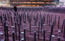 1만 5,179개의 꽃이 장식된 서울광장