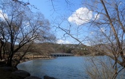 서울대공원에는 동물원둘레길, 호숫가둘레길, 삼릭욕장길 등 3곳의 산책로를 이용할 수 있다