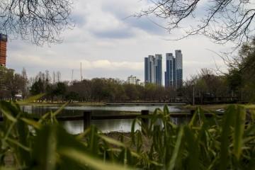 서울 숲의 봄