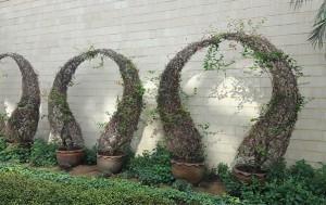 서울식물원 온실의 포토존