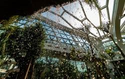 서울식물원 온실