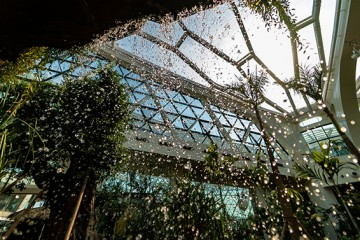 드디어 정식 개원 서울식물원, 놓치면 안되는 볼거리