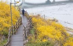 한강과 중랑천으로 둘러싸여 있는 탁 트인 풍광을 보여주는 응봉산