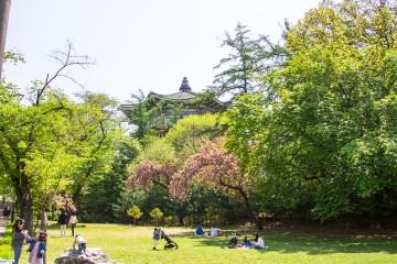 어린이대공원에서 봄날 피크닉