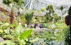 서울식물원이 5월 1일 개관했다