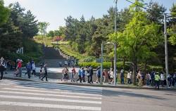 서울로 걷기대회에 참여한 시민들이 남산에서 한양도성길을 따라 서울로7017로 향하고 있다