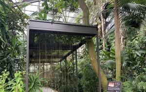 서울대공원 식물원 '시서스 터널'