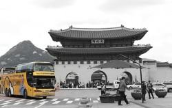 ㈜노랑풍선시티버스에서 운영하는 서울시티투어버스, DDP에서 탑승할 수 있다