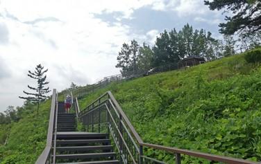 강서구 염창산에 조성한 산책로 전경