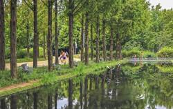 '서울숲'