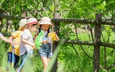 서울시는 방학을 맞아 경의선숲길 등 21개 공원에서 다채로운 자연체험 프로그램을 운영한다