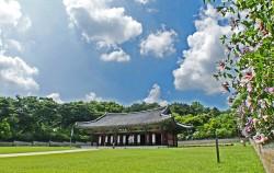 무궁화꽃이 활짝 핀 효창공원 의열사 전경