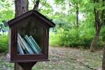 숲을 독서실로 삼고 ~