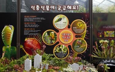 서울대공원 식물원 식충식물 전시