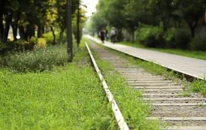 경춘선숲길 따라 걷는 힐링의 순간
