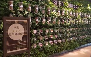 서울식물원 '씨앗도서관'에서 씨앗을 대출해주는 프로그램을 운영 중이다.