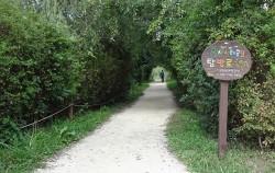 한강변에 자리한 청정 생태수변공원