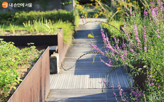 서서울호수공원의 전신이었던 정수장 시설물울 활용해 아름다운 정원으로 꾸며놓았다