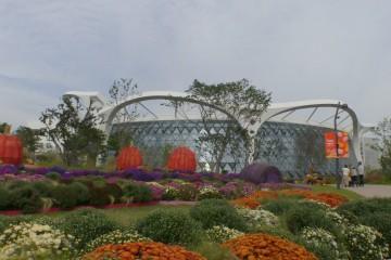 '빅토리아수련' 필 무렵…서울식물원 나들이 갈까
