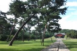 세계문화유산이자 멋진 도심 숲 공원이기도 한 조선 왕릉