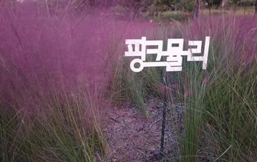 잠원 한강공원, 그라스 정원