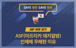 # SAFE 한돈 SAVE 한돈 ASF 바로 알기 ASF(아프리카 돼지열병) 인체에 무해한 이유 우리돼지 한돈이 알려드립니다.