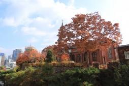 아름다운 도심 공원 같은 약현성당의 이즈음 풍광