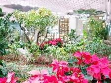 종각역 태양의 정원의 아름다운 모습