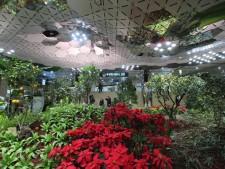 종각역 태양광 광장 전경