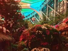 다양한 식물들이 가득한 서울식물원의 온실