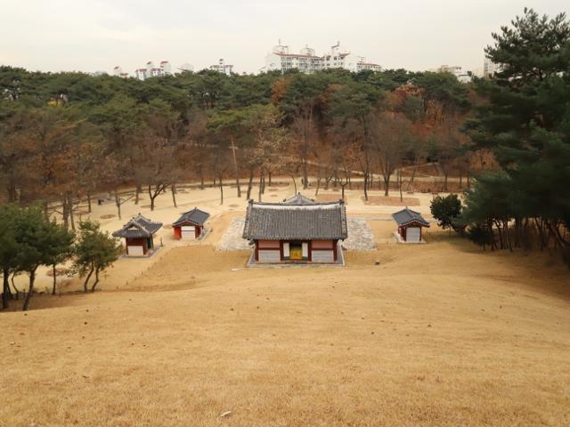 신덕왕후의 사연 깃든 정릉, 겨울숲 산책도 강추!