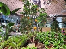 종각역 지하정원의 천장 채광장치