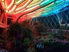 서울식물원 온실 야간 특별관람