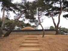 헌릉 능침공간으로 오르는 호젓한 숲속 나무 계단길