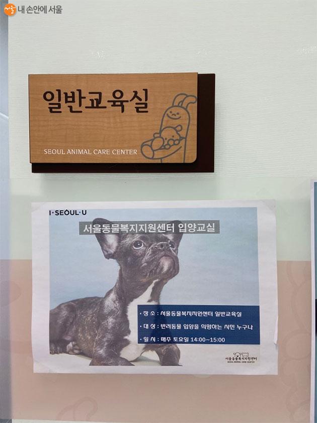 서울동물복지지원센터에서는 매주 입양교육을 진행한다