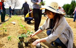 서울시는 서울시민 500명을 대상으로 귀촌·귀농교육을 무료로 실시한다