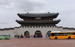01B 녹색순환버스가 광화문 앞을 지나고 있다.