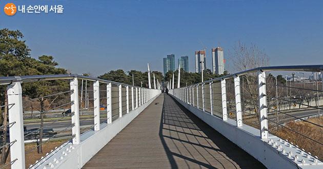 걷는 재미가 쏠쏠한 서울숲의 보행가교. 서울숲과 한강을 잇는 구름다리다
