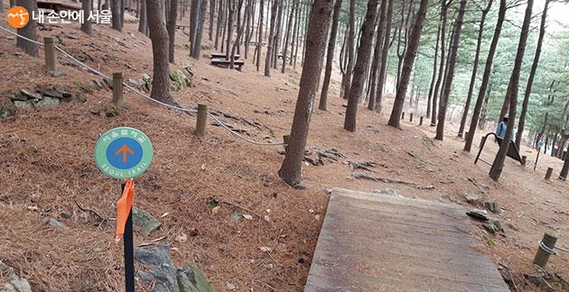 서울둘레길 5-2코스의 호암산 잣나무산림욕장 입구