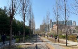철도를따라 걷는 경춘선 숲길