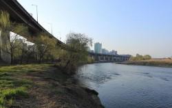 서울시가 지정한 생태경관보존지역인 탄천이 양재천을 품에 안은 뒤 한강으로 흘러가고 있다.